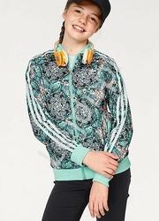 Trykotowa bluza młodzieżowa adidas orginals zoo superstar