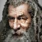 Polyamory - gandalf, władca pierścieni - plakat wymiar do wyboru: 70x100 cm