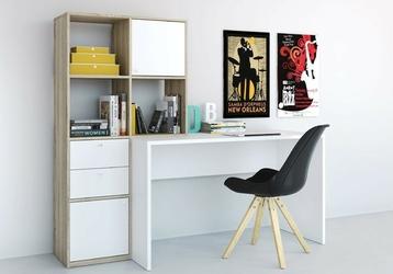 Function plus biurko z extra regałem