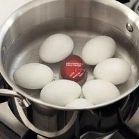 Jajo do jajek