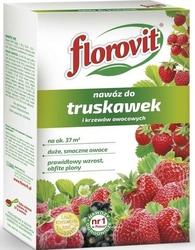 Florovit, nawóz granulowany do truskawek i krzewów owocowych, 925g