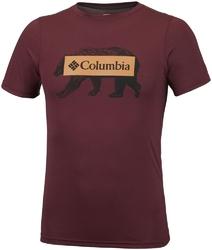 T-shirt męski columbia box logo bear em0745615