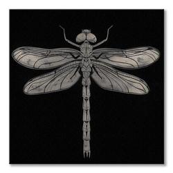 Dragonfly - obraz na płótnie
