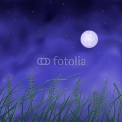 Obraz na płótnie canvas trzyczęściowy tryptyk Pole pszenicy pod pełni księżyca w nocy