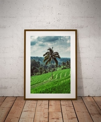 Jatiluwih tree - plakat premium wymiar do wyboru: 61x91,5 cm