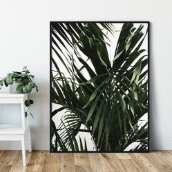 Plakat w ramie - tropical view , wymiary - 40cm x 50cm, ramka - biała