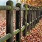 Fototapeta na ścianę omszałe ogrodzenie fp 4004