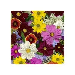 Dzikie kwiaty - reprodukcja