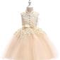 Sukienka dla dziewczynki tiulowo koronkowa ze stójką- szampańska