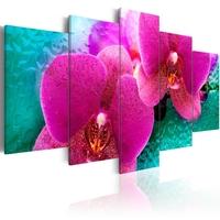 Obraz - exotic orchids