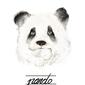Panda - plakat wymiar do wyboru: 20x30 cm
