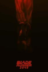 Blade runner 2049 - plakat premium wymiar do wyboru: 60x80 cm