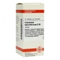 Histaminum hydrochloricum d 30 tabl.