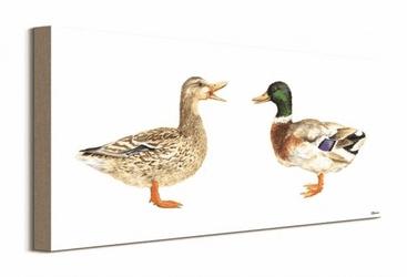 Kaczka i kaczor - obraz na płótnie