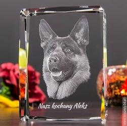Zdjęcie 2.5D Twojego zwierzaka • Grawer 3D zdjęcia •  FOTOKRYSZTAŁ 3D