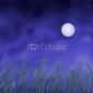 Tapeta ścienna pole pszenicy pod pełni księżyca w nocy