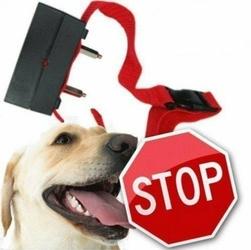 Duża Obroża Antyszczekowa dla Psa - Czerwona