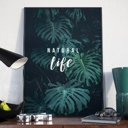 Plakat w ramie - natural life , wymiary - 20cm x 30cm, ramka - biała