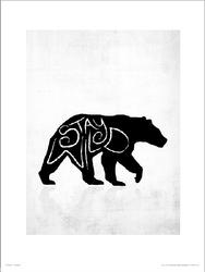 Stay Wild Niedźwiedź - plakat premium