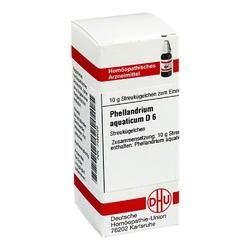 Phellandrium aquaticum d 6 globuli