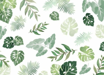 Egzotyczne liście - fototapeta