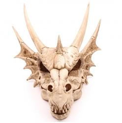 Smocza czaszka duża - 47cm
