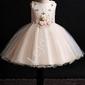 Waniliowo złota sukienka dla dziewczynki zdobiona kwiatkami 3d- 2006