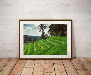Jatiluwih - plakat premium wymiar do wyboru: 100x70 cm