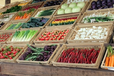 Fototapeta duże stoisko z warzywami fp 1051