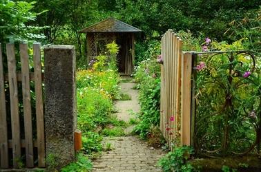 Fototapeta tajemniczy ogród fp 1642