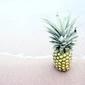 Fototapeta ananas na plaży fp 860