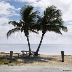 Obraz na płótnie canvas dwuczęściowy dyptyk stół piknikowy z palmami na plaży w florida keys, florida,