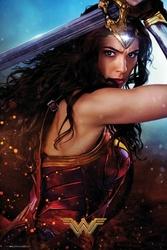 DC Comics Wonder Woman Defend - plakat