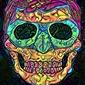 Psychoskulls, green lantern, dc comics - plakat wymiar do wyboru: 20x30 cm