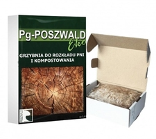 Grzybnia do usuwania pni i kompostowania pg-poszwald eko