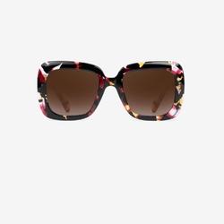 Okulary hawkers flower butterfly - butterfly
