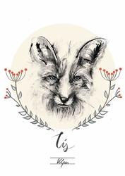 Lisek - plakat wymiar do wyboru: 59,4x84,1 cm