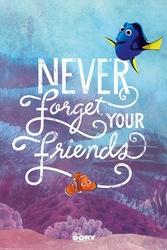 Gdzie jest Dory  Nigdy nie zapomnij Twoich Przyjaciół - plakat