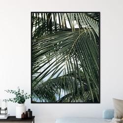 Plakat w ramie - tropical sky , wymiary - 40cm x 50cm, ramka - czarna
