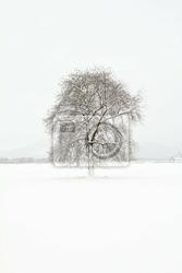 Obraz pejzaż zimowy