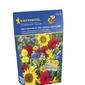 Łąka kwietna – mieszanka nasion w tubie – wyśmienita – 100 g