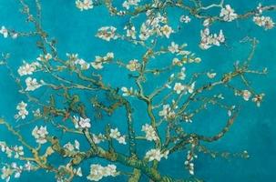 Van Gogh Migdałowy Kwiat - plakat