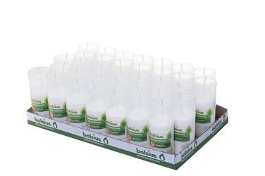 Bolsius, wkład parafinowy do znicza, 1.5 dnia palenia, 35 sztuk