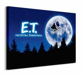 ET Quad - Obraz na płótnie