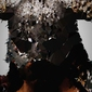 Polyamory - dragonborn, the elder scrolls - plakat wymiar do wyboru: 30x40 cm