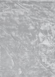 Carpet decor :: dywan calcatta srebrny