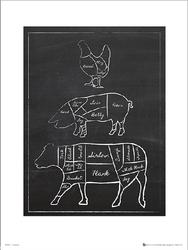 Butchers Cuts Chalk Portrait - plakat premium