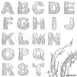 Obraz na płótnie canvas czteroczęściowy tetraptyk czcionki z drutu kolczastego