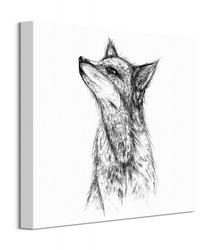 Fox - obraz na płótnie