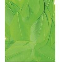 Ozdobne piórka płaskie 3 g - zielony jasny - zieljas